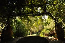 Angoli del Parco