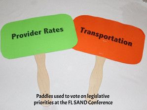 Self-Advocates to Focus on Transportation and Provider Rates at DD Day