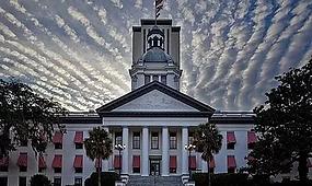 Florida Capitol.webp