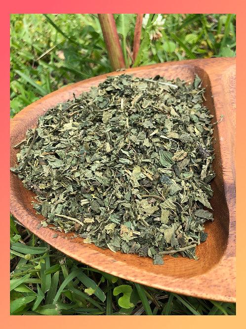 Witch Hazel Leaf Tea