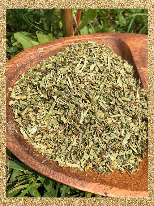 Shepherds Purse herbal tea