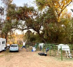 campsite fun.jpg