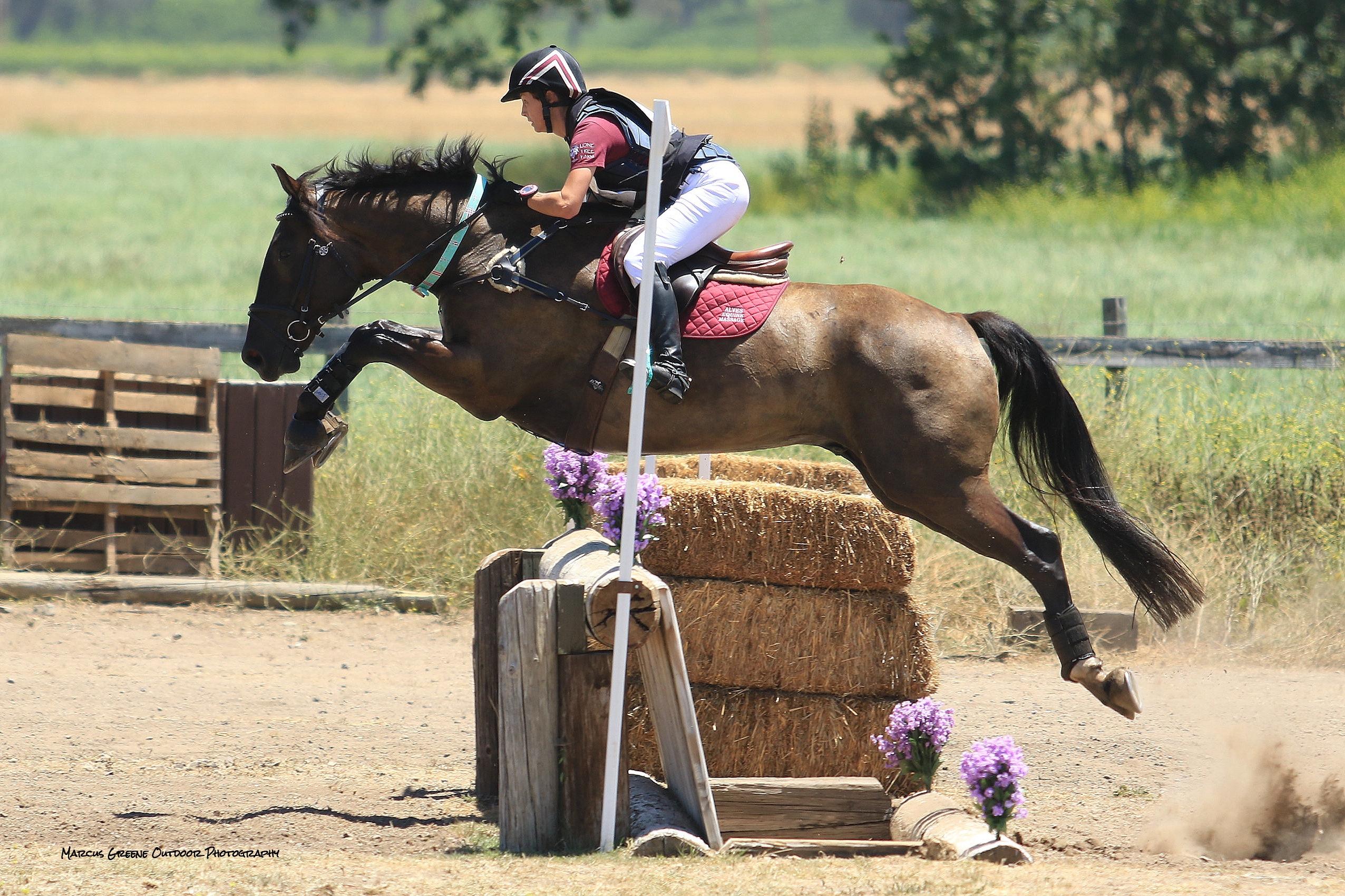 Wyatt Shepherd Ranch 8-16