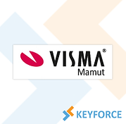visma_mamut_220x216.png