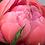 Thumbnail: Bouquet di 3 peonie, 3 alstromeria, eucalipto