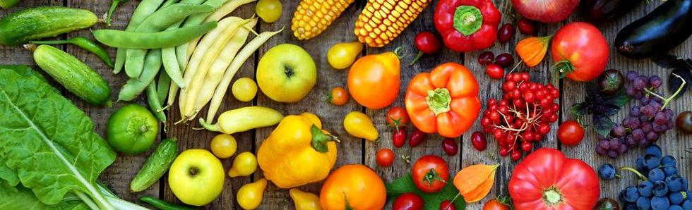 Dilligence Nutrition Header.jpg
