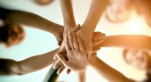 Cooperativismo avança e promove transparência com assembleias virtuais