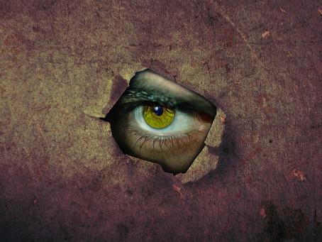 Молчаливый свидетель убийства