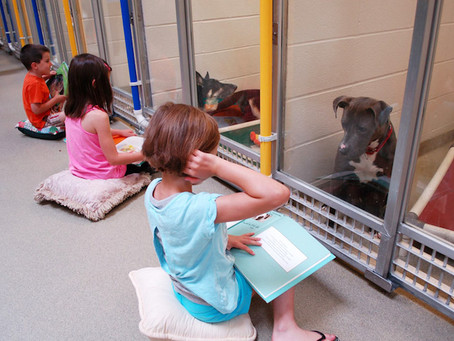 Почему дети читают собакам книги?