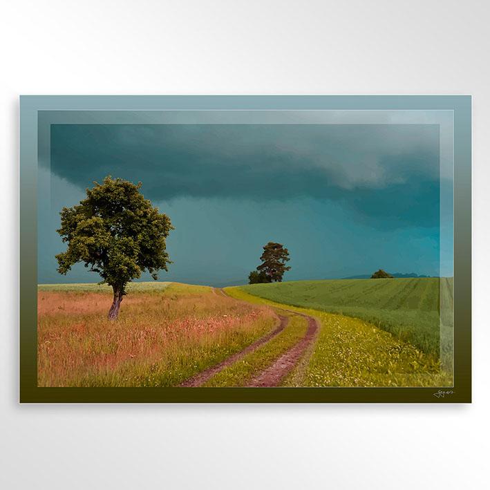 Rainclouds 3.jpg