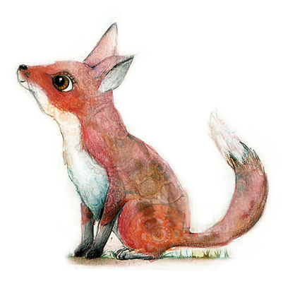 fox cub illustration childrens art