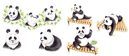 From 'The Giant Panda Party', author Gill Arbuthnot, Publisher Floris Books