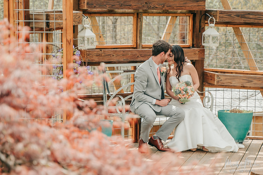 Intimate Wedding in Northern California,  A wedding couple with their foreheads together sitting on a bench with wooden background