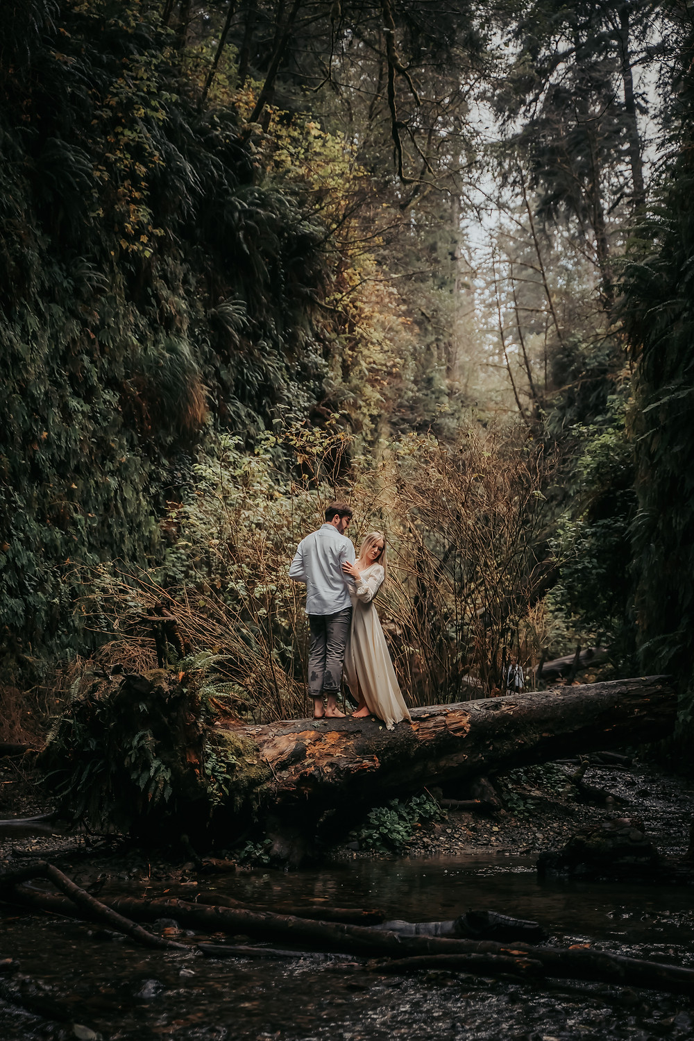A wedding couple standing on a log in the middle of Fern Canyon during their California Elopement