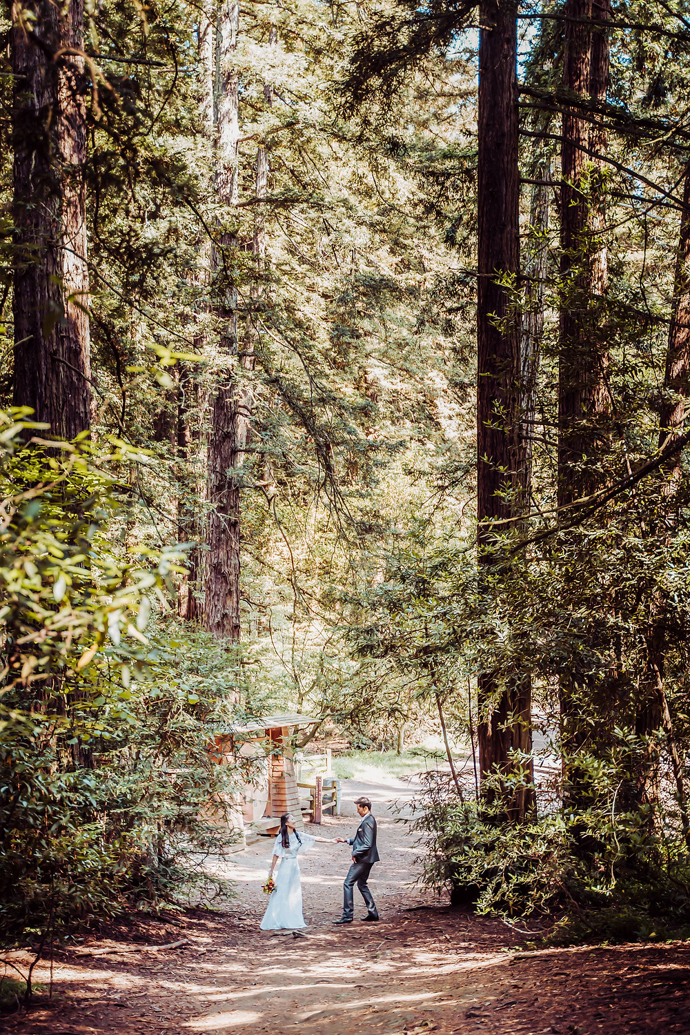 A wedding couple dancing in the middle of a trail surrounded by the tall redwood trees of California during their elopement day