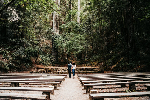 A couple walking down the amphitheater at the Armstrong Redwoods State Natural Preserve on their mini moon