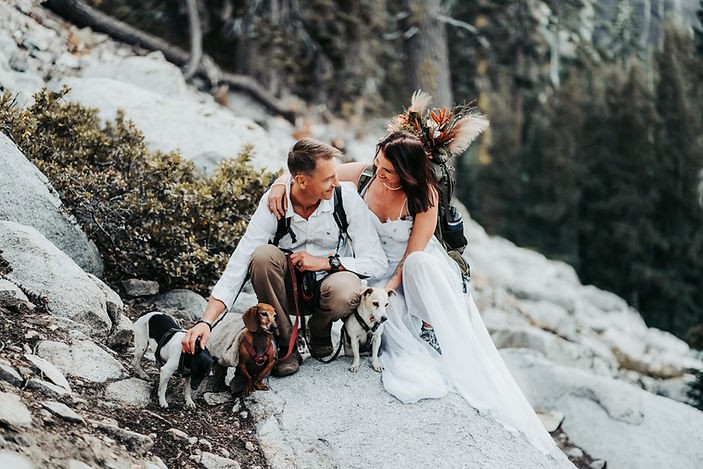 A bride and groom sitting on a rock with their dogs with the backdrop of the woods of Lake Tahoe.  The Bride is wearing a hiking backpack with a bouquet in it.  This is from an adventure elopement in Lake Tahoe