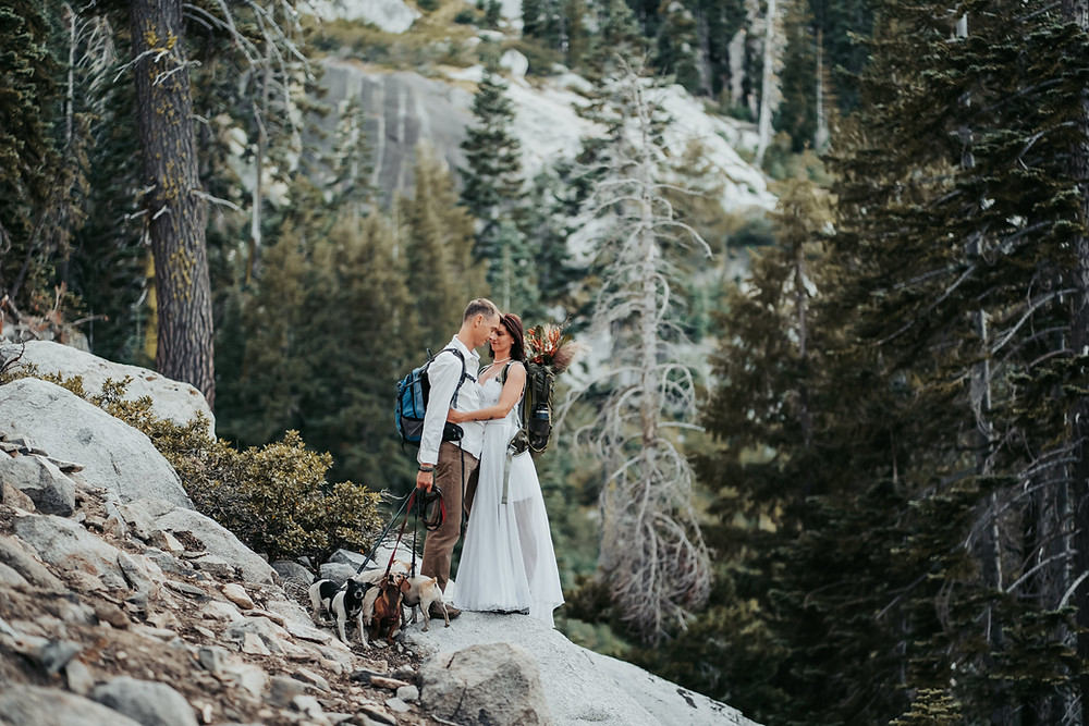 A bride and groom with hiking backpacks on standing on a rock cliff overlooking the mountains in Lake Tahoe on their elopement day.  Joining them is their 3 dogs