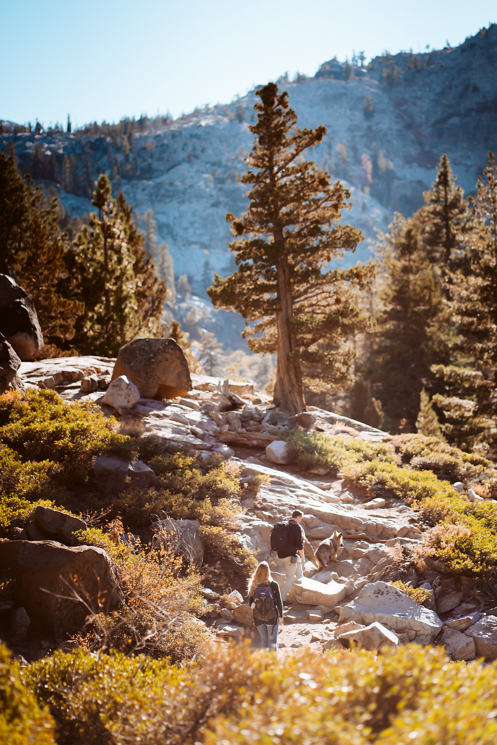 A couple and their dog hiking to Eagle Lake and climbing the rock stairs with a mountain in the backdrop in Lake Tahoe