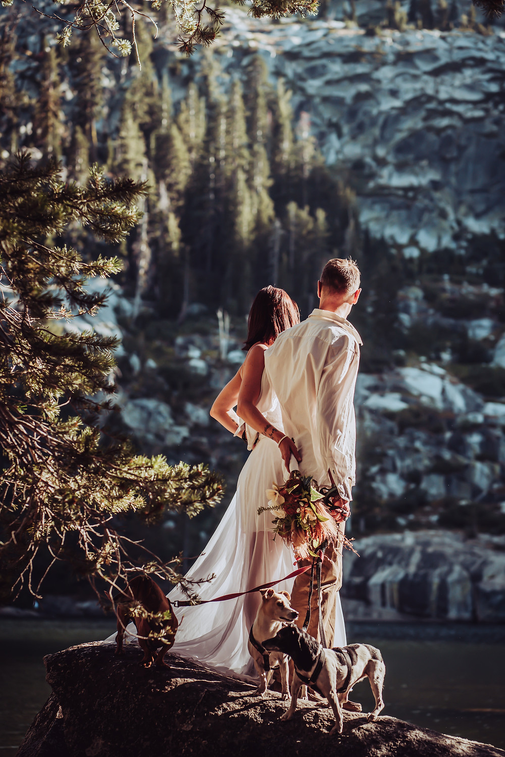 Bride and Groom looking out over the lake around Lake Tahoe with there 3 dogs on the rock beside them.  Couple photos for their elopement day in the mountains
