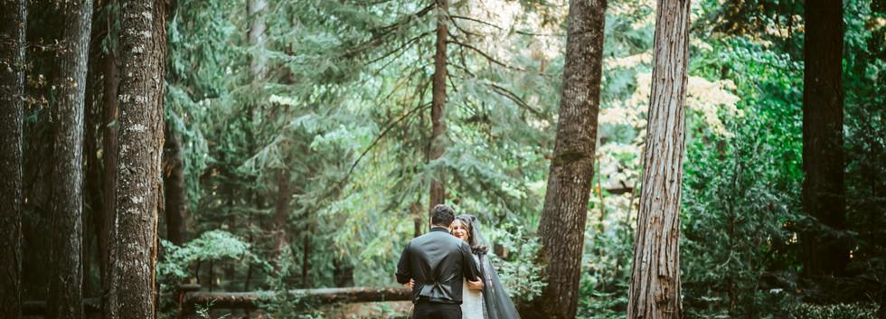 Northern California Intimate Wedding