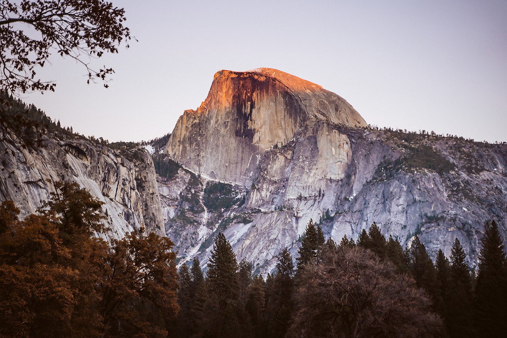 Half Dome at Yosemite National Park with pink alpine glow on it