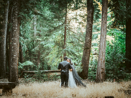 Kaebra and Tom | Halloween Wedding in the Forest | An Intimate Wedding