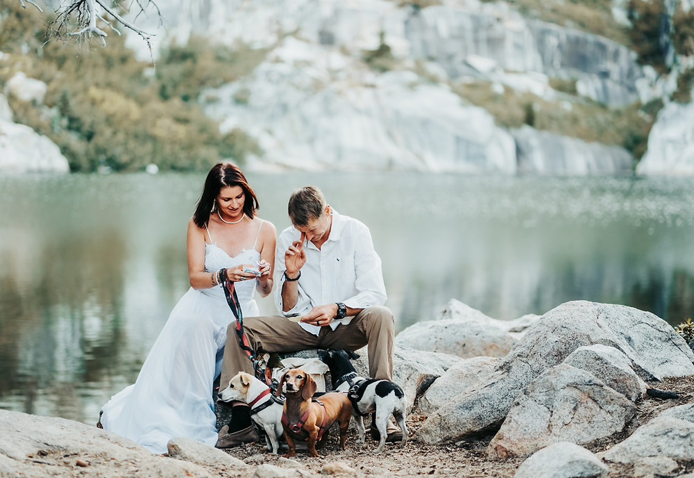 A bride and groom with their 3 dogs reading their love letters they had left in a bottle and sitting on rocks with a lake as the backdrop.  A great elopement idea!  Photo of eloping in Lake Tahoe
