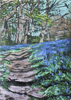Bluebells on Sibden Hill, Shanklin, Isle of Wight