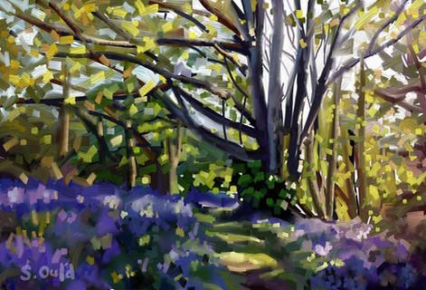 'Sibden Spring'