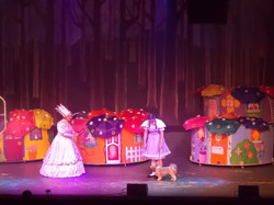 Wizard of Oz Land of the Munchkins