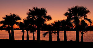 San Diego Sunset.jpg