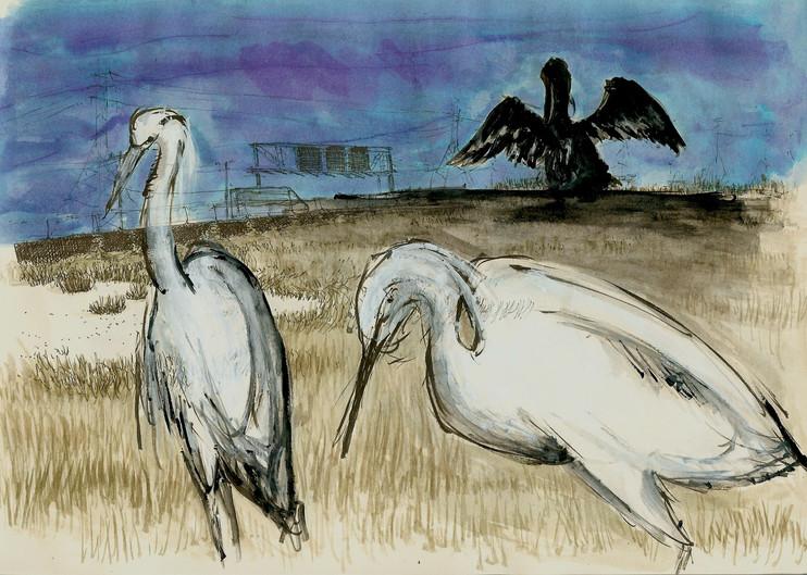 watercolor, gouache, pen