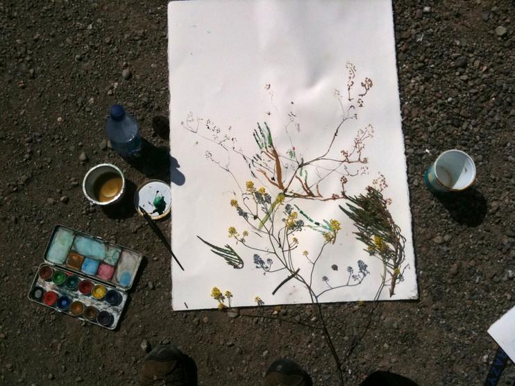 watercolor 20 in x 24 in