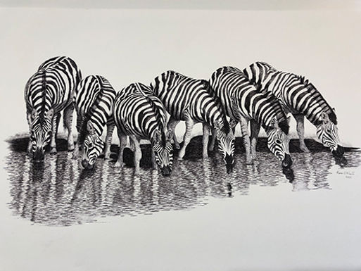 The Watering Hole (Zebra)tif.jpg