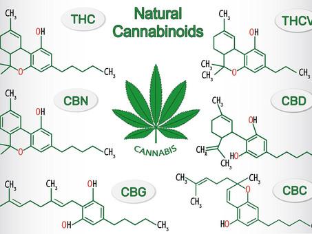 Cannabinoids - Canna WHAT?