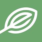ElevateHolistics logo.png