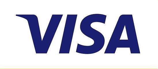 VISA 2017 Report