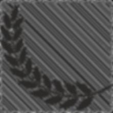 royalty-laurel-512_edited.png