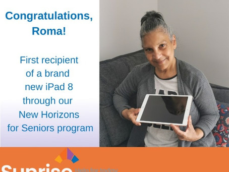 Navigating the Virtual World with the New Horizons for Seniors Program