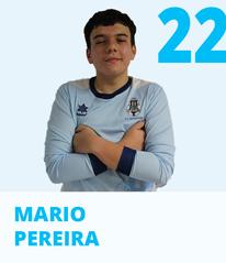 DEF_MARIO.png