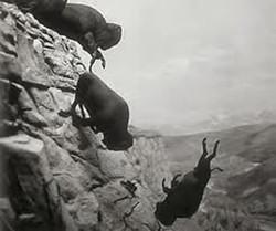 Vore Buffalo Jump