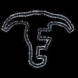 Elshere Logo Transparent.png