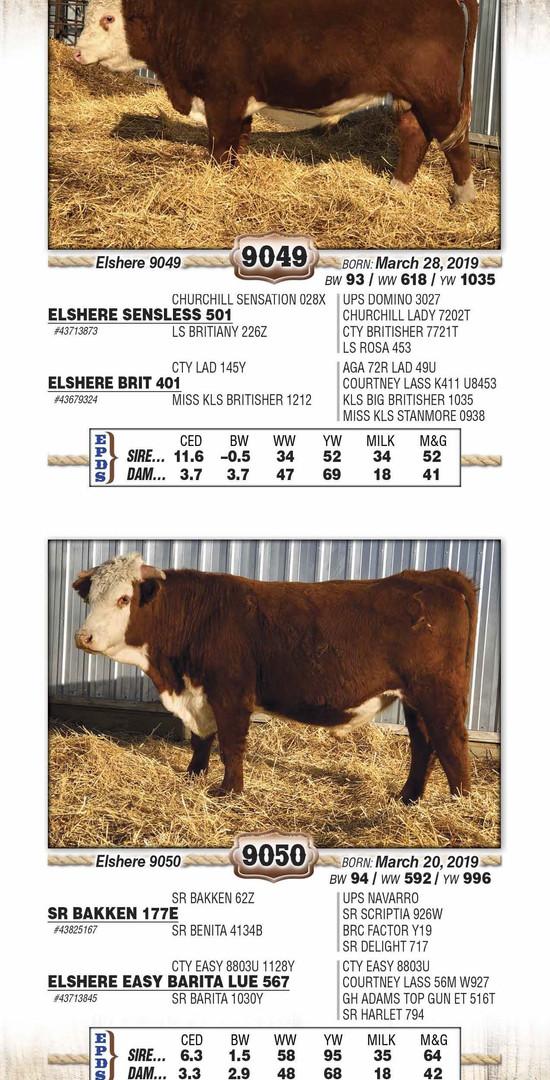 Elshere 2021 catalog WEB_Page_21.jpg