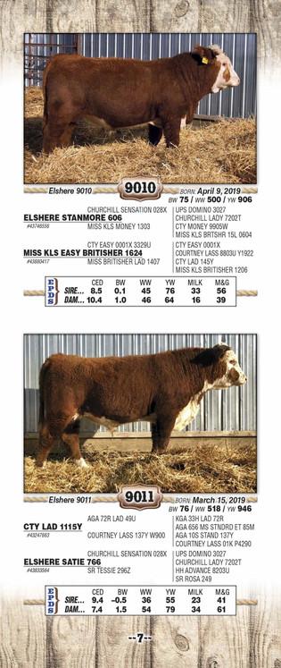 Elshere 2021 catalog WEB_Page_09.jpg