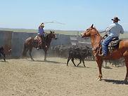 Crow Creek Guest Ranch | South Dakota