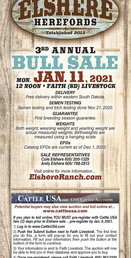 Elshere 2021 catalog WEB_Page_02.jpg