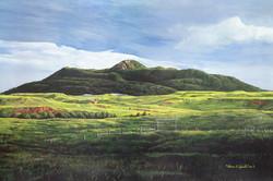Bruce Speidel Art Gallery