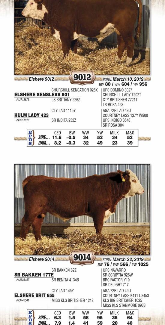 Elshere 2021 catalog WEB_Page_10.jpg