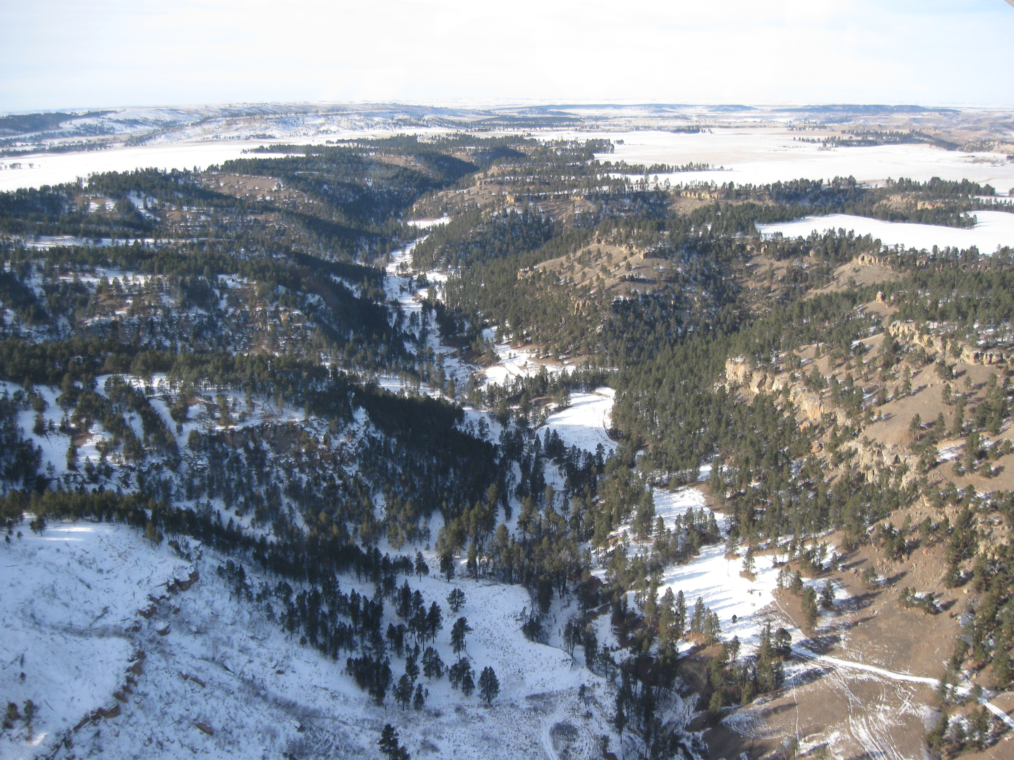 Black Gulch as seen from the air.